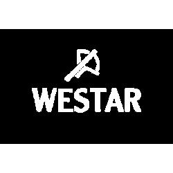 westar watches 250x250 1